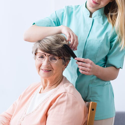 home care senior services grooming assistance in Mclean, Tysons Corner, Virginia