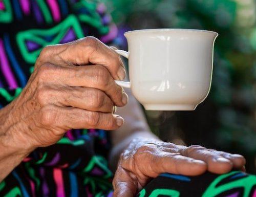 senior and elderly care in Northern Virginia