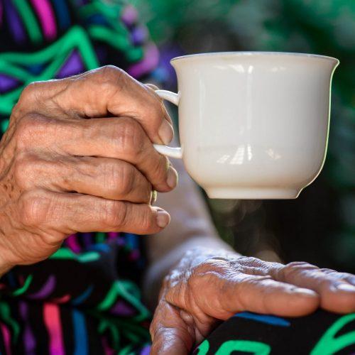senior elderly home care in mclean virginia